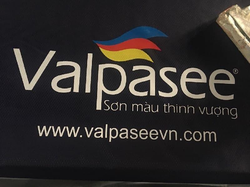 Áo mưa in logo khách hàng Valpasee